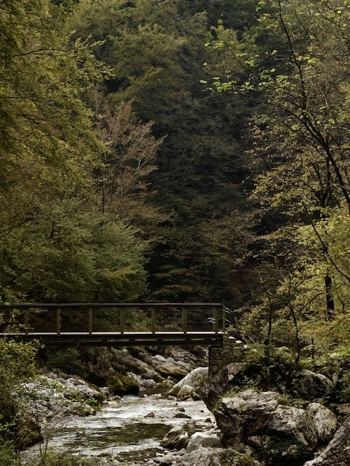 eco travel in Slovenia: Tolminka Gorge
