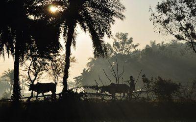 Why I'm Dreaming of Maharashtra, India.