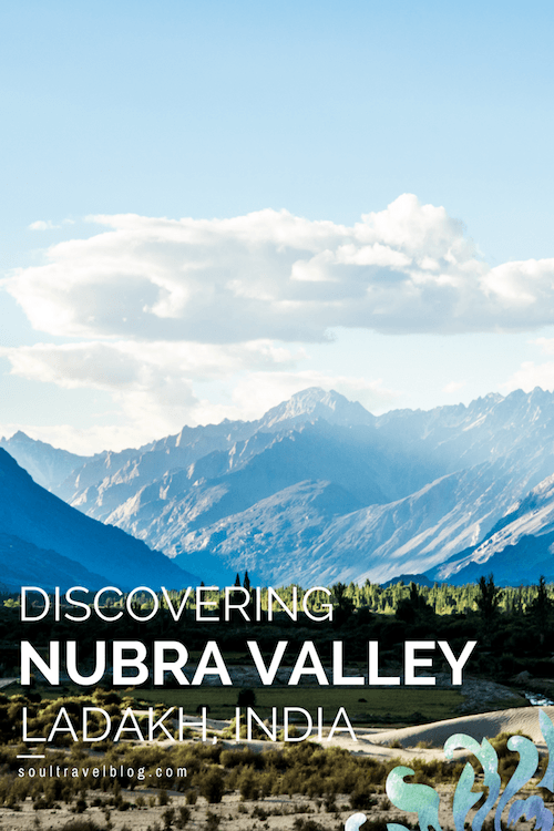 Want to travel to Ladakh? Looking for things to do in Nubra Valley, Ladakh, India? Here at the feet of the Indian Himalayas you'll find tips on where to stay, how to get to Sumur and more. Save this pins to one of your boards for later!
