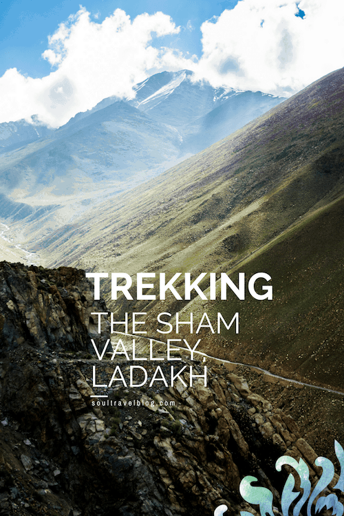 Want to know more about trekking in Ladakh? Is the Sham Valley trek suitable for beginners? Want to travel to the Indian Himalayas? Read more about beautiful Ladakh, India here and save this post to one of your boards for later !
