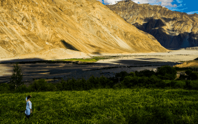 Discovering Nubra, Ladakh – Part Two: Nubra Valley to Pangong.