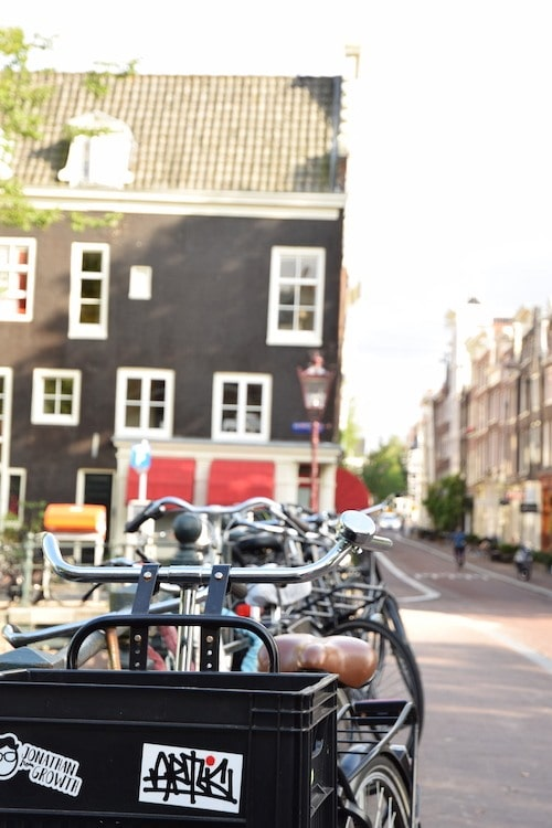 The Best of Sustainable Travel in Amsterdam: A Guide.