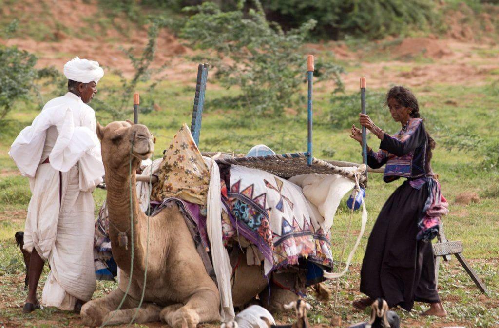rabari tribe life in Kutch Gujarat