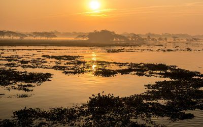 Bangladesh Travel: 30 Things to Know Before you Go.
