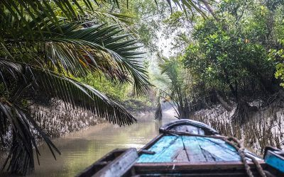In Search of Swimming Tigers: Exploring Bangladesh's Sundarbans.