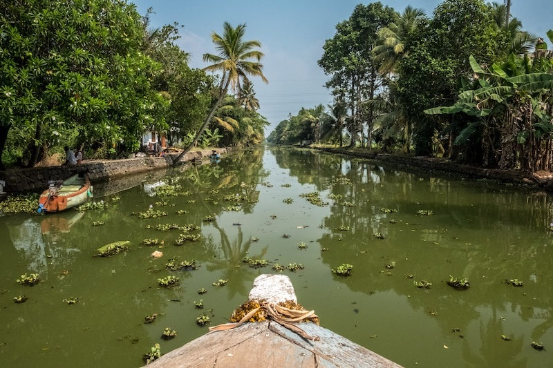 The Best of Responsible Travel in Kerala: A Guide  | Soul Travel