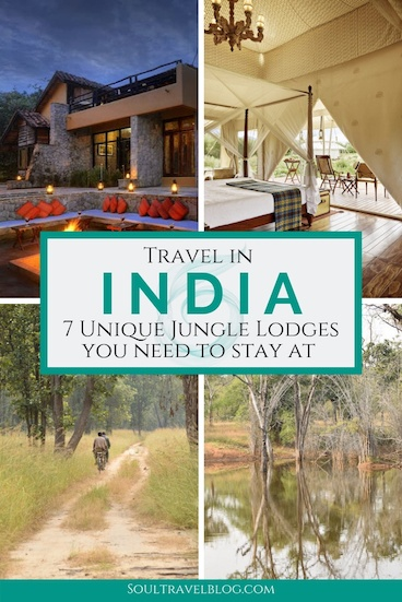 Planning travel in India? Check out these incredible jungle lodges in India - the perfect base for a safari in India, or getting back to nature! #incredibleindia #india #indiatravel #asiatravel