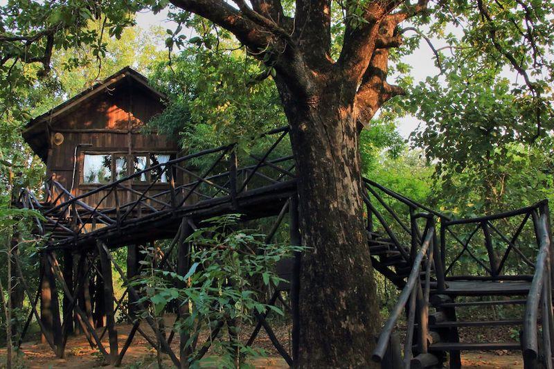 bandhavgarh resorts