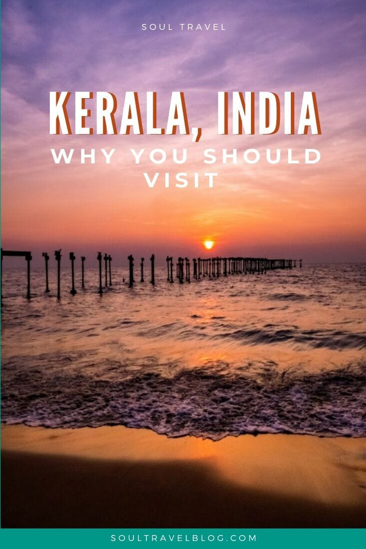 Why you should Visit Kerala, India - reasons why Kerala is a great option for your India trip: Find out more in our guide! #india #incredibleindia #traveltips