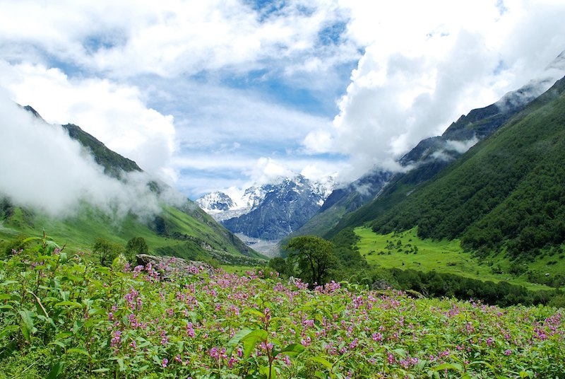 Best time to visit valley of flowers, uttarakhand
