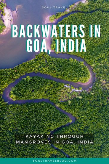 Planning a trip to Goa, India? Don't miss the chance to explore Goa's backwaters, and kayak Goa's beautiful mangroves - read our guide for must-know tips! #responsibletravel #india #goa