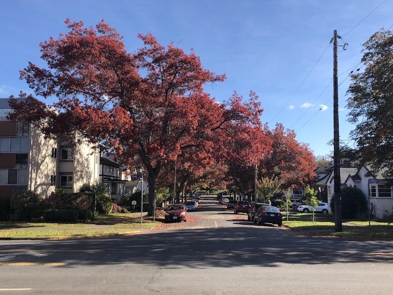 where to live in Victoria BC